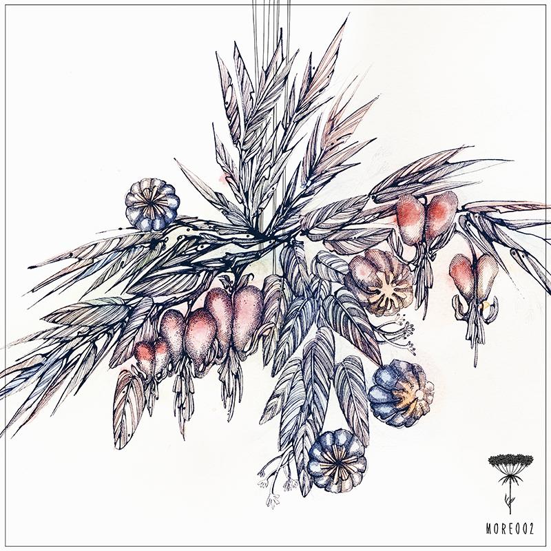 wilde-mohre-2-release_800